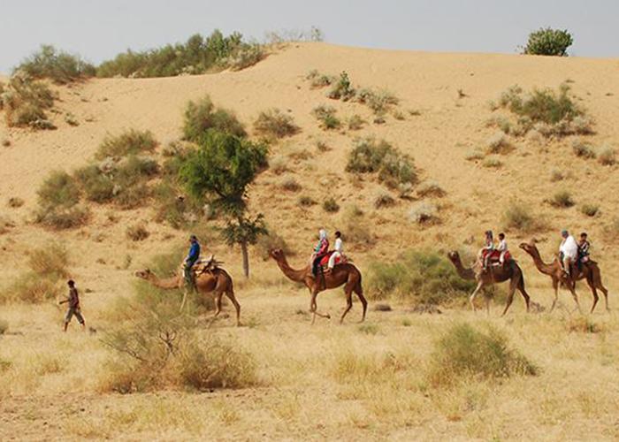 desert-safari-jodhpur4